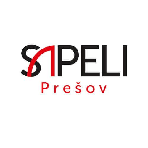 Tvroba webstránky pre distribútora dverí Sapeli v Prešove